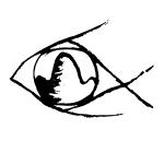 fisheyemountain