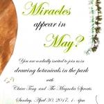 May Miracles.001